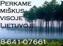 ĮMONĖ 864107661PERKA MIŠKĄ SU ŽEME AR IŠSIKI