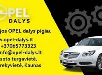 Naujos Opel dalys internetu