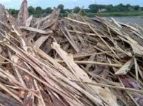 Parduoda medienos atraižas kurui