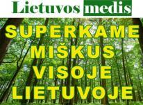 """Lietuvos medis"" brangiai perka miska visoj"